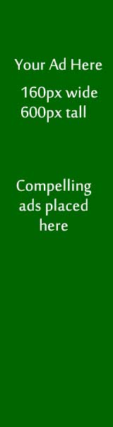 Ad Example Green 160px by 600px